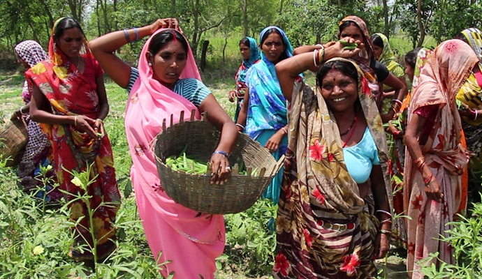 Why 30 women rent two acres of land together