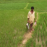 India's Lower House Passes Land Acquisition Bill